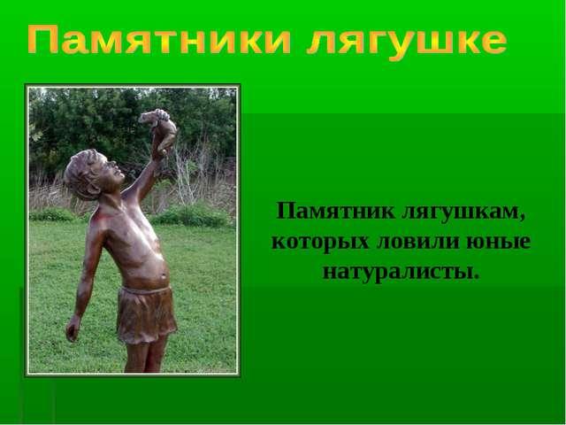Памятник лягушкам, которых ловили юные натуралисты.
