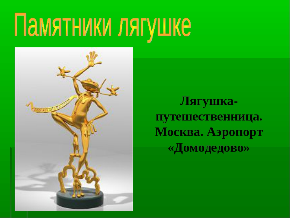 Лягушка-путешественница. Москва. Аэропорт «Домодедово»