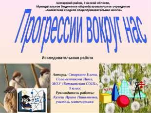 Авторы: Старкина Елена, Соломенникова Инна, МОУ «Баткатская СОШ», 9 класс Ру