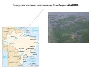 Через джунгли течет самая – самая главная река Южной Америки - АМАЗОНКА