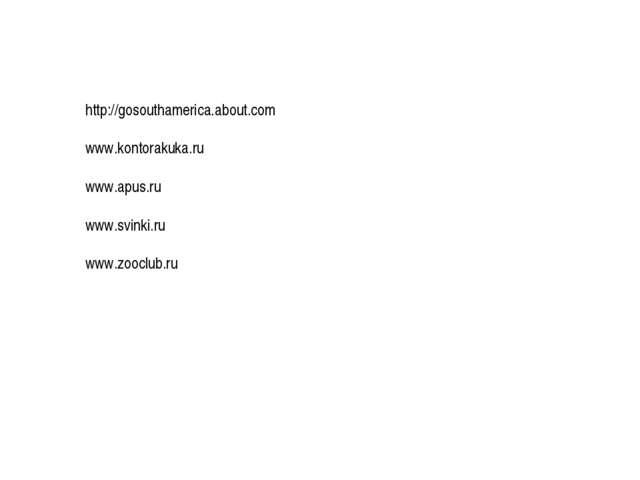 http://gosouthamerica.about.com www.kontorakuka.ru www.apus.ru www.svinki.ru...