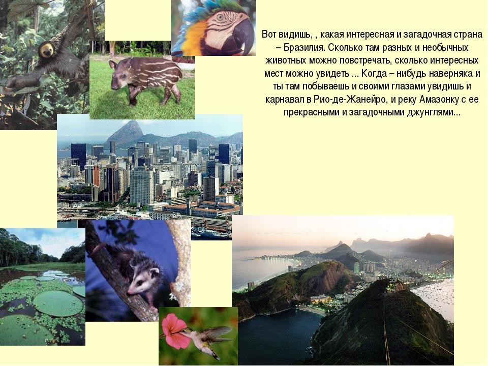 Вот видишь, , какая интересная и загадочная страна – Бразилия. Сколько там ра...