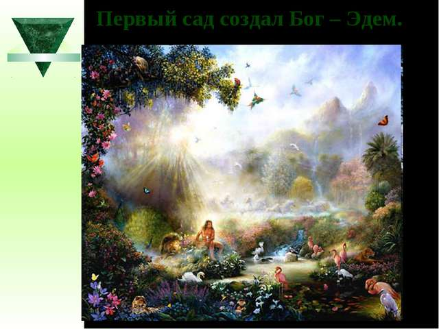 Первый сад создал Бог – Эдем.