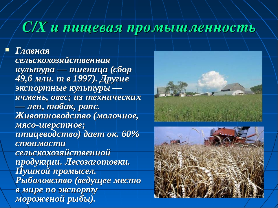 С/Х и пищевая промышленность Главная сельскохозяйственная культура — пшеница...