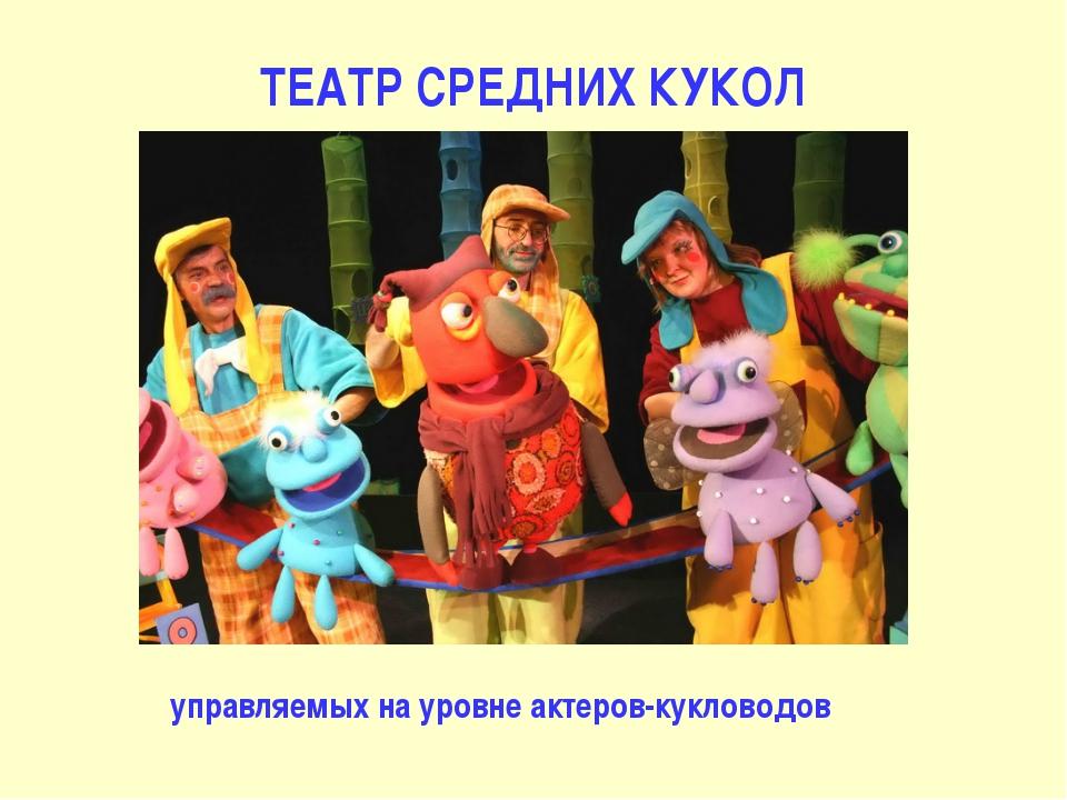 ТЕАТР СРЕДНИХ КУКОЛ управляемых на уровне актеров-кукловодов