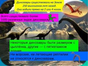 Всего существовало более 1000 различных видов динозавров. Некоторые динозавры