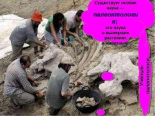 Останки динозавров изучают учёные. Существует особая наука— палеонтология; э