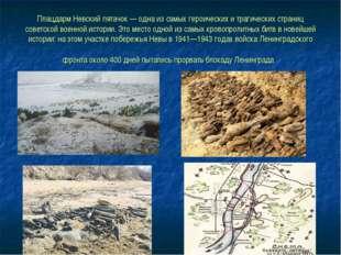 Плацдарм Невский пятачок — одна из самых героических и трагических страниц со