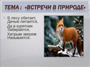 В лесу обитает, Дичью питается, Да в курятник Забирается, Хитрым зверем Назыв