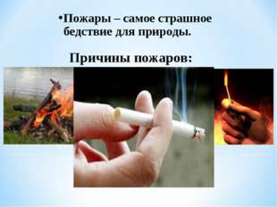 Пожары – самое страшное бедствие для природы. Причины пожаров: