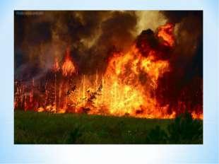 Берегите природу от пожаров. Когда-то, собравшись с последними силами, Создал