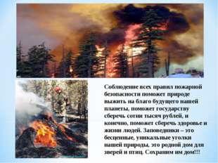 Соблюдение всех правил пожарной безопасности поможет природе выжить на благо