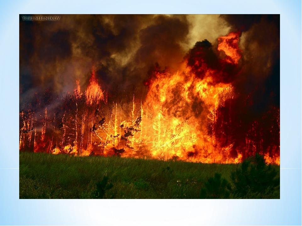 Берегите природу от пожаров. Когда-то, собравшись с последними силами, Создал...