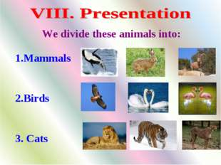 1.Mammals 2.Birds 3. Cats We divide these animals into: