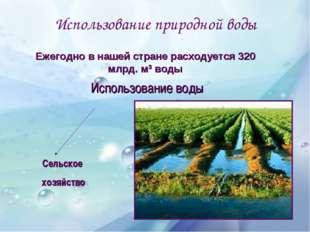 Использование природной воды Использование воды Сельское хозяйство Бытовые ну