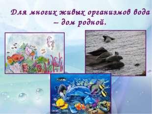Для многих живых организмов вода – дом родной.