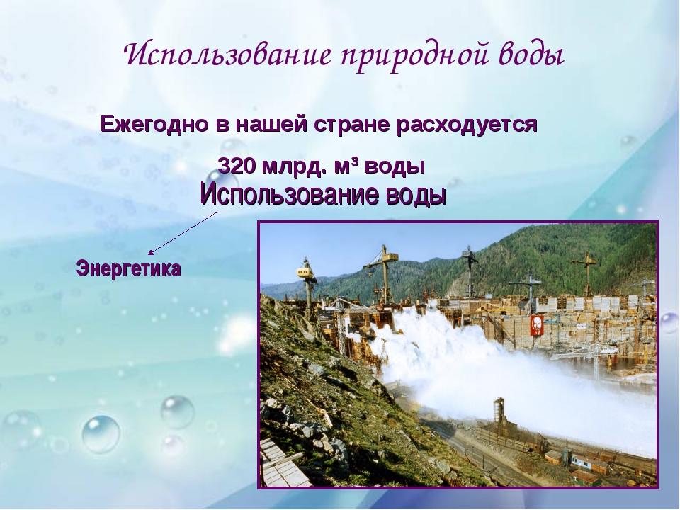 Использование природной воды Использование воды Бытовые нужды Энергетика Рыбо...