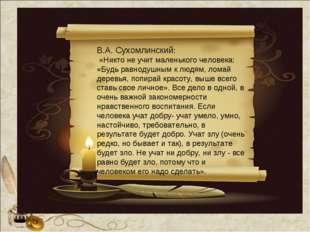 В.А. Сухомлинский: «Никто не учит маленького человека: «Будь равнодушным к лю