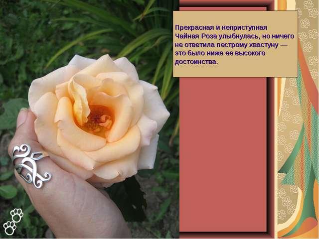 Прекрасная и неприступная Чайная Роза улыбнулась, но ничего не ответила пестр...