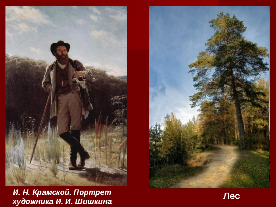 И. Н. Крамской. Портрет художника И. И. Шишкина Лес