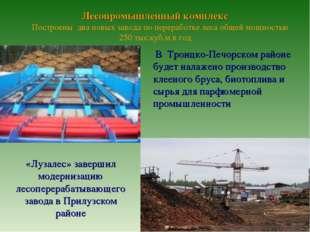 Лесопромышленный комплекс Построены два новых завода по переработке леса общ