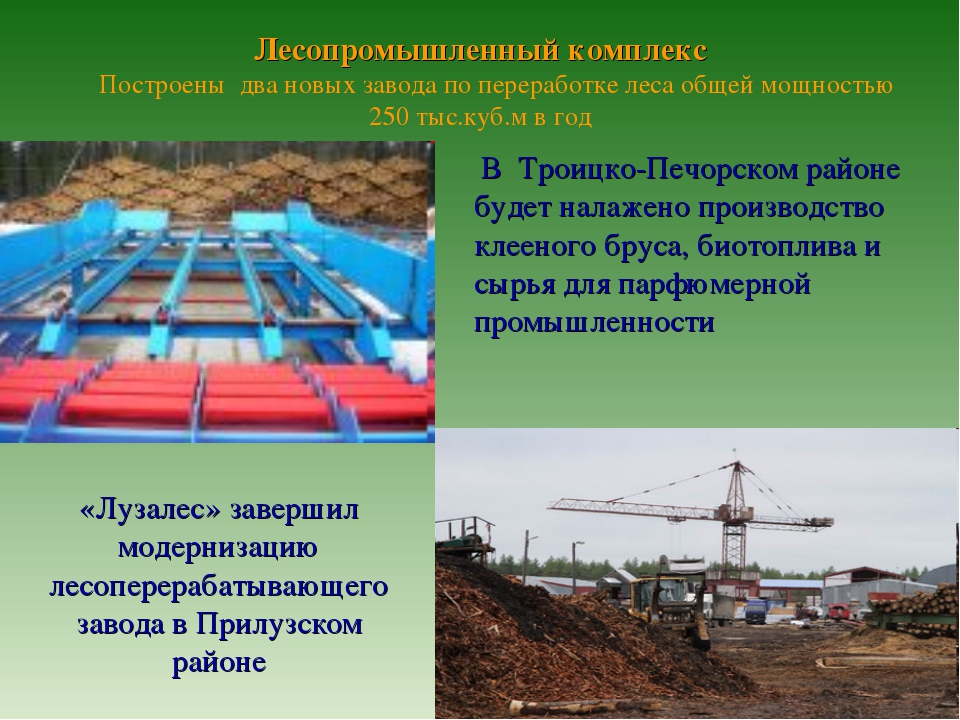 Лесопромышленный комплекс Построены два новых завода по переработке леса общ...