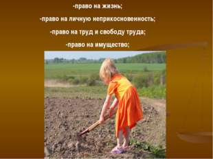 -право на жизнь; -право на личную неприкосновенность; -право на труд и свобод