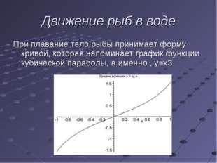 При плавание тело рыбы принимает форму кривой, которая напоминает график функ