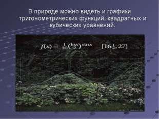В природе можно видеть и графики тригонометрических функций, квадратных и куб