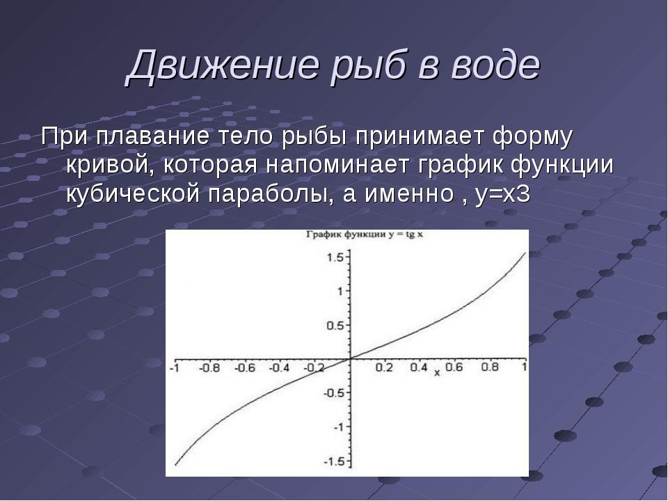 При плавание тело рыбы принимает форму кривой, которая напоминает график функ...