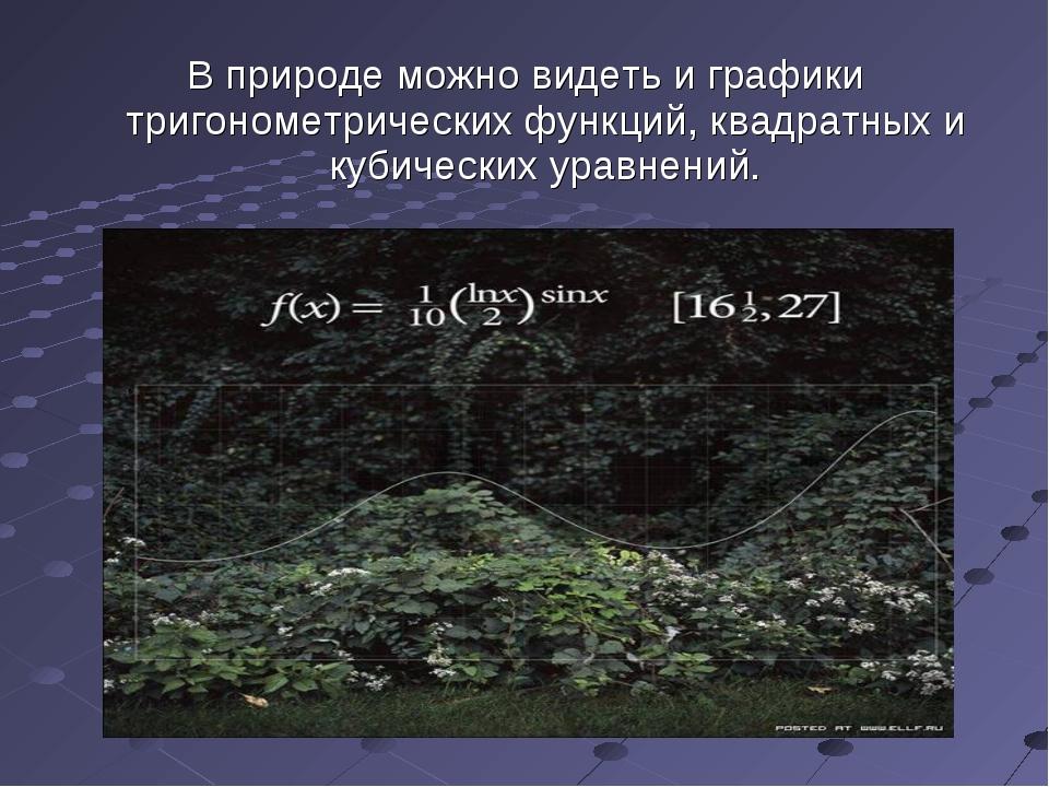 В природе можно видеть и графики тригонометрических функций, квадратных и куб...