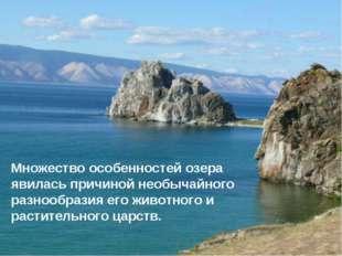 * Множество особенностей озера явилась причиной необычайного разнообразия его