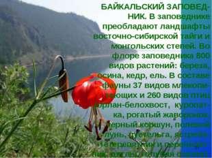 * БАЙКАЛЬСКИЙ ЗАПОВЕД-НИК. В заповеднике преобладают ландшафты восточно-сибир