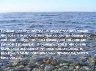 * Байкал – самое чистое на Земле озеро. Редкая чистота и исключительные свойс