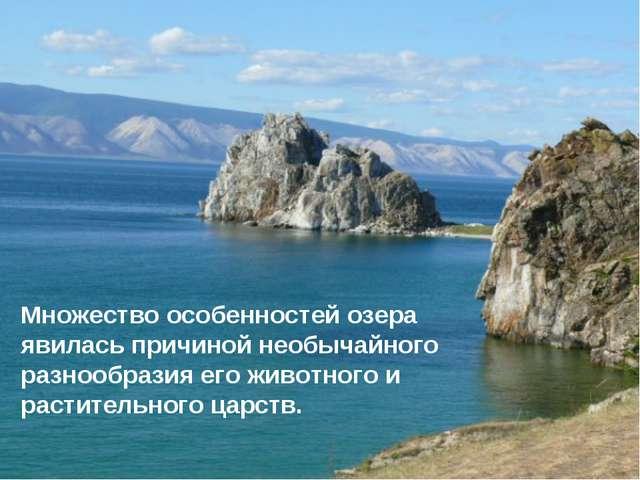 * Множество особенностей озера явилась причиной необычайного разнообразия его...