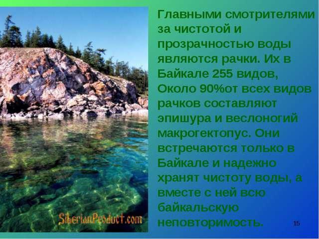 * Главными смотрителями за чистотой и прозрачностью воды являются рачки. Их в...