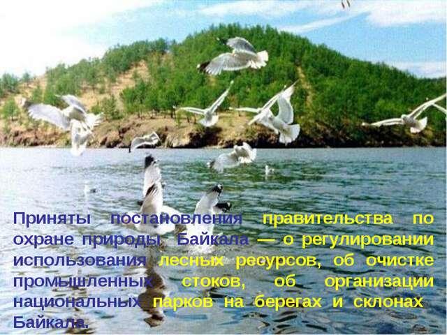 * Приняты постановления правительства по охране природы Байкала — о регулиров...