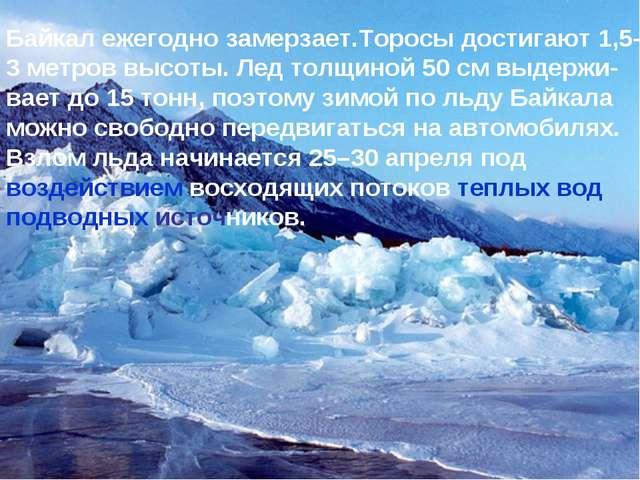 * Байкал ежегодно замерзает.Торосы достигают 1,5- 3 метров высоты. Лед толщин...
