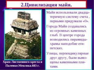 2.Цивилизация майя. Майя жили в Центральной Америке.Они очищали земли от джун