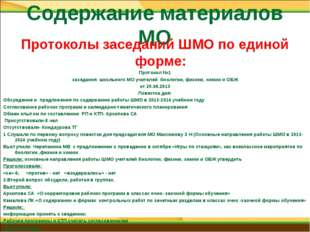 Содержание материалов МО Протоколы заседаний ШМО по единой форме: Протокол №1