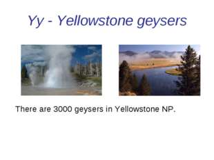 Yy - Yellowstone geysers There are 3000 geysers in Yellowstone NP.