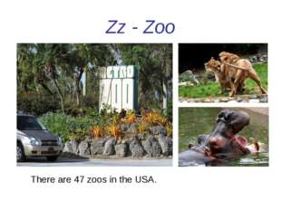 Zz - Zoo There are 47 zoos in the USA.