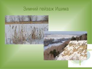 Зимний пейзаж Ишима