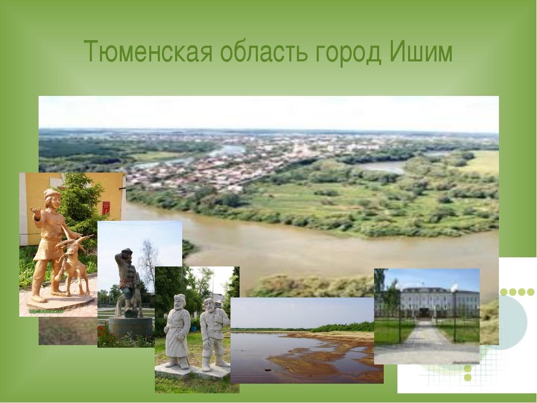 Тюменская область город Ишим