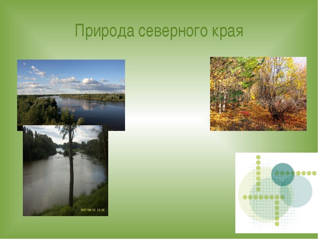 Природа северного края