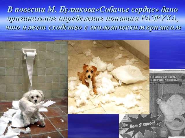 В повести М. Булгакова«Собачье сердце» дано оригинальное определение понятия...