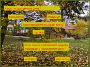 Какую погоду приносит осень? Какое настроение вызывает осень? Какие изменения