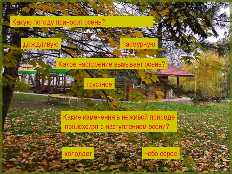 Какую погоду приносит осень? Какое настроение вызывает осень? Какие изменения...