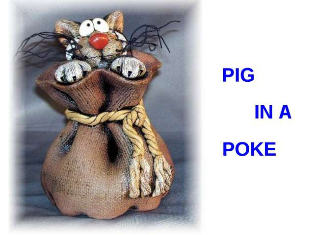 PIG IN A POKE