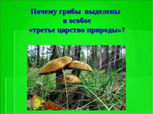 Почему грибы выделены в особое «третье царство природы»?